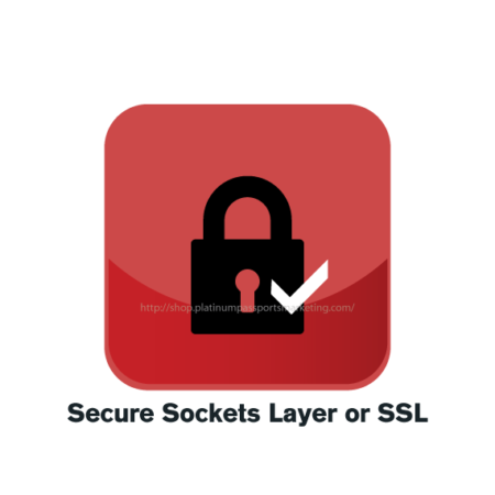 Secure Sockets Layer or SSL